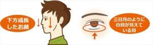 下方成長の顔付きと三日月のように白目が見えている目