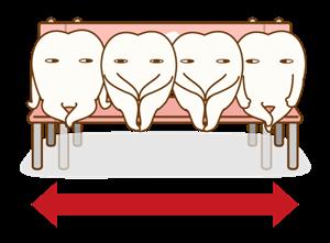 広い顎で歯もキチンと並ぶ